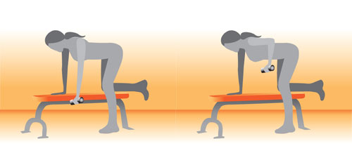 Bend Over Rows Exercise